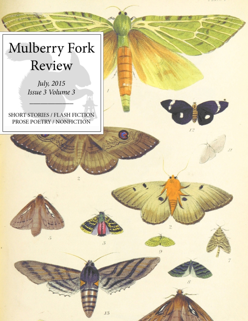 Mulberry Fork Review Issue 3 Volume 3 Cover
